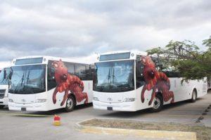 El proyecto del Citybus quedó cancelado, aunque el Gobierno que encabeza Gabino Cuè Monteagudo no ha hecho ningún anuncio oficial al respecto.
